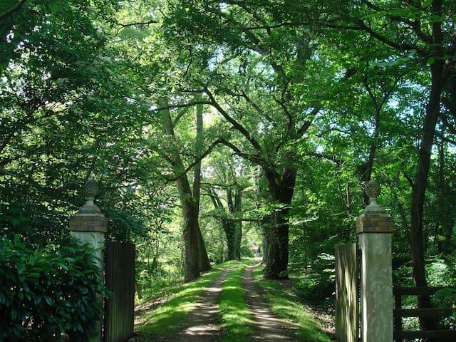 Authentic Cottage Zen Park 1ha - Landes d'Armagnac