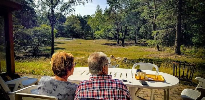 De Weeser Enk: Villa met eigen landgoed in Epe