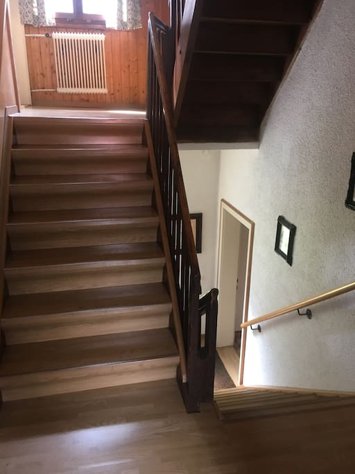 staircase with broad stairs to the 1st floor / breites Stiegenhaus zum 1. OG