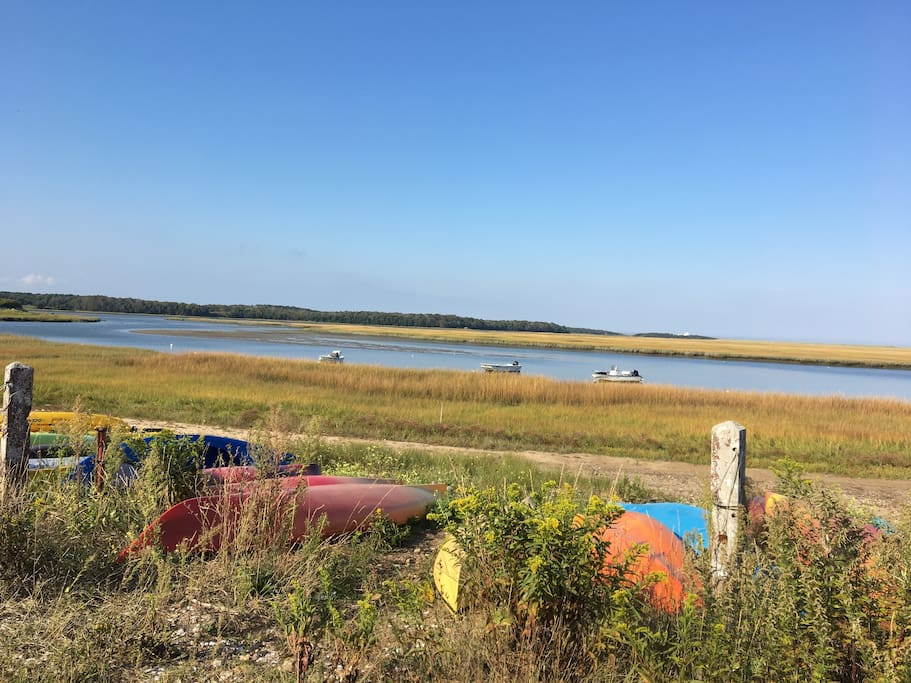 kayaks pulled up at in the  marsh in fall light