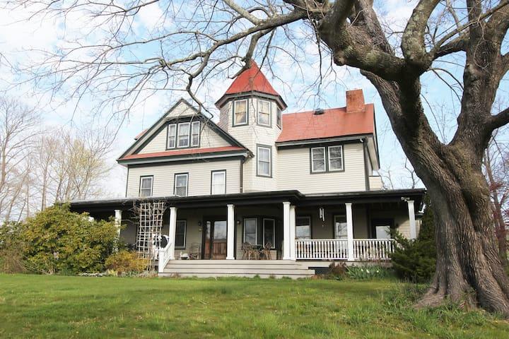 Historic Grand Victorian on Hill #1
