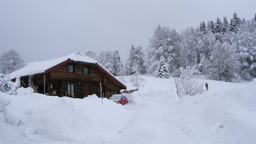 Maison en bois ronds - La Pesse - Casa