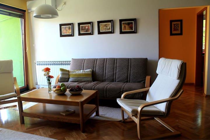 City Park Apartments - fancy schmancy room :)