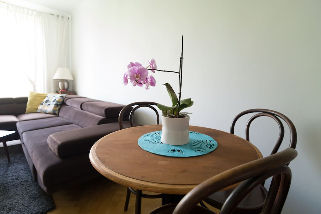 living room, table for 4-5 persons