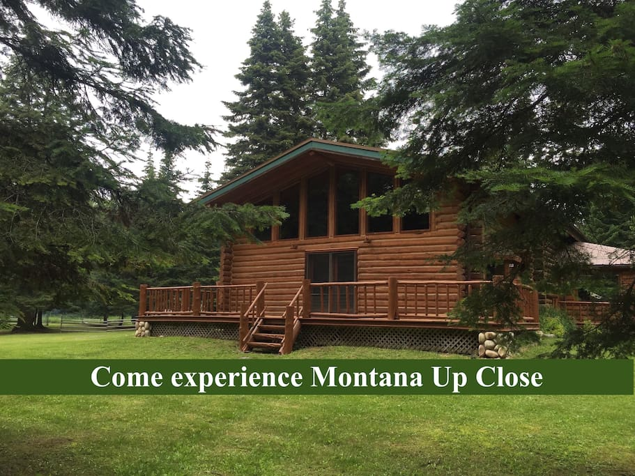 Montana Up Close Log Cabin Antelope Room Cabins For