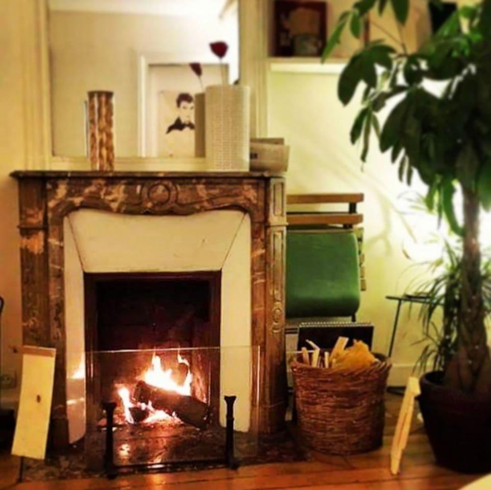 cheminée, décoration, plantes vertes