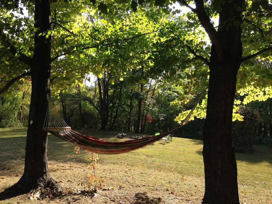 Hang out in the hammock.