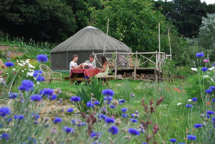 yurt on an ecosmallholding