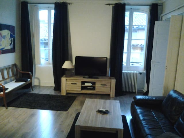 Appartement bourgeois de 140m2 CV - Carcassonne - Daire
