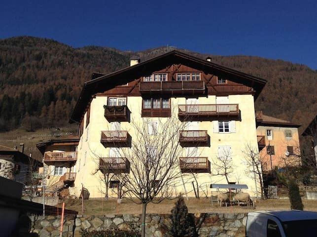 Maso dei Margheritini - Val di Sole - Terzolas - อพาร์ทเมนท์