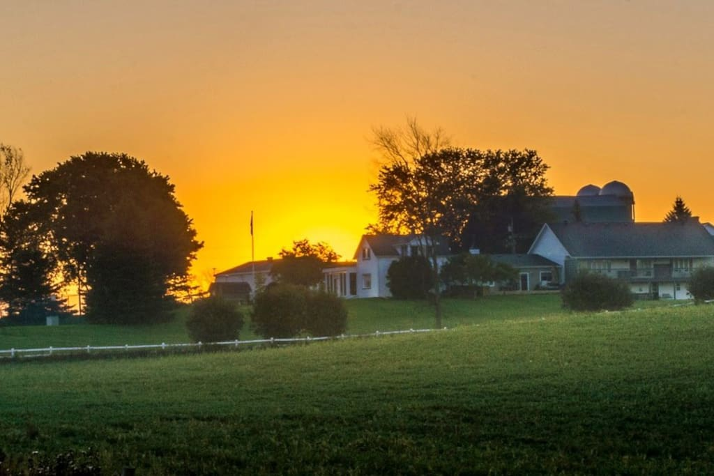 Summer Sunrise at Mountain Ash Farm