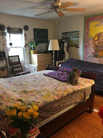 Princeton Bedroom in Shared Home