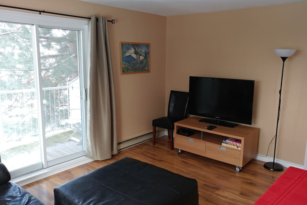 """46"""" TV with cable and Netflix in living room."""