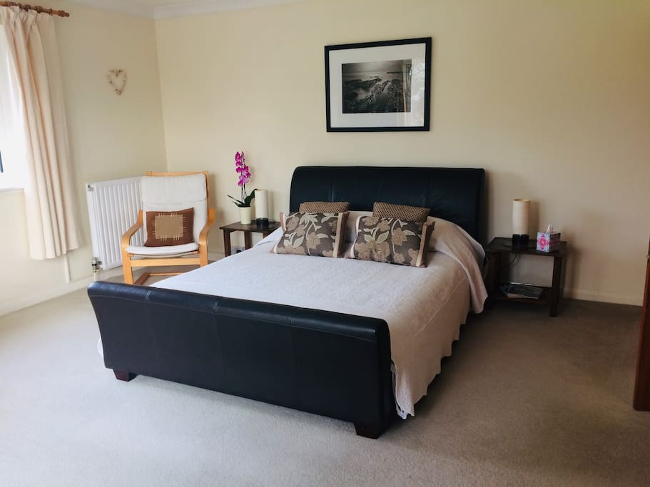 Ground Floor Garden Room with King size leather bed.