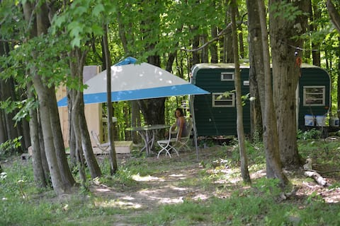 Comfortable Camping in the Woods