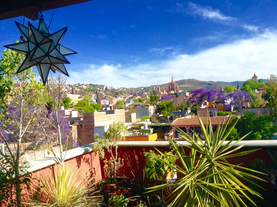 The San Miguel hills are alive with color and hummingbirds as seen from our terrace