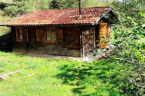 Back to nature: Idyllic romantic hill farm retreat
