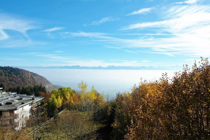 Apartment with balcony and lake view -GVA in 35min - Saint-Cergue - Byt