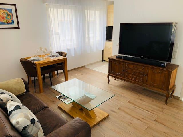 Neu Sanierte 2-Zimmer Erdgeschoss-Wohnung