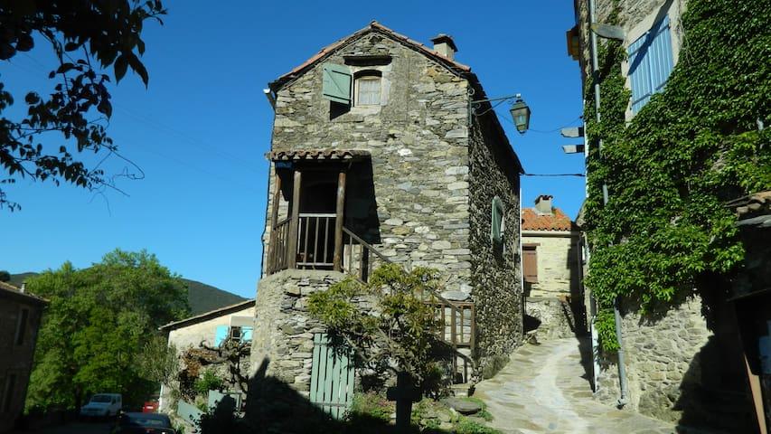 Charmante maison de campagne proche Roquebrun - Vieussan - Holiday home