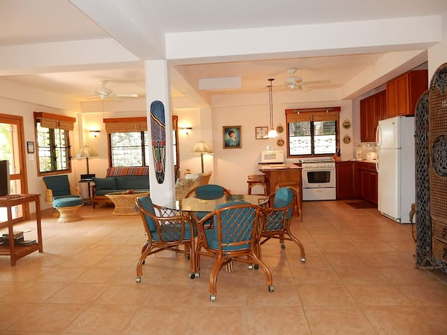 Harbour Hideaway of Placencia - Placencia - Appartement