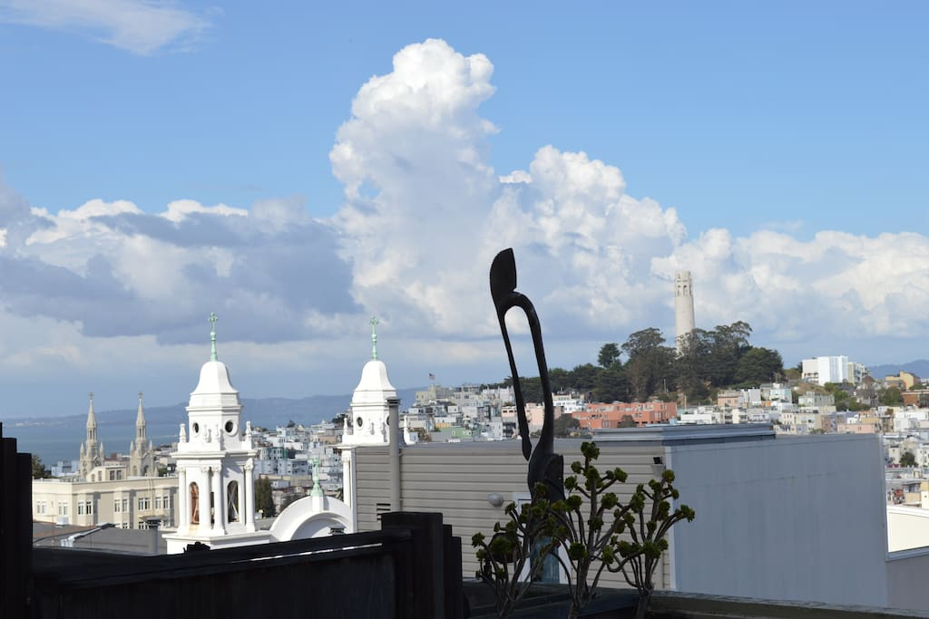 Peter, Pauls Church (DiMaggio & Monroe), plus Coit Tower from your patio!