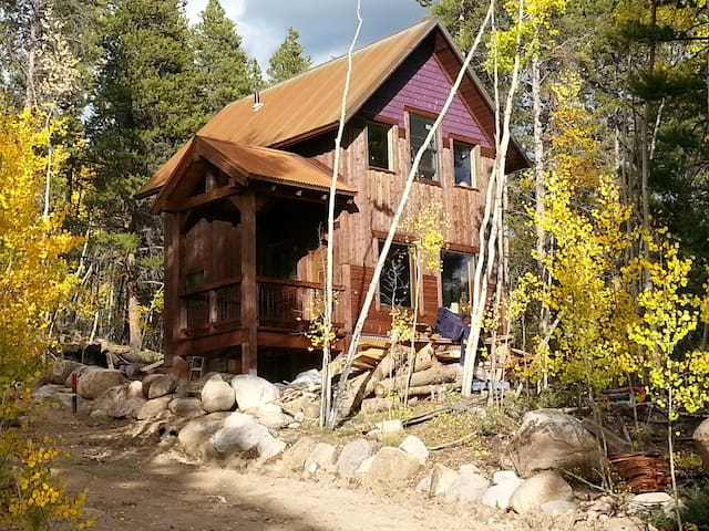 Aspen Forest Retreat - Leadville - Rumah