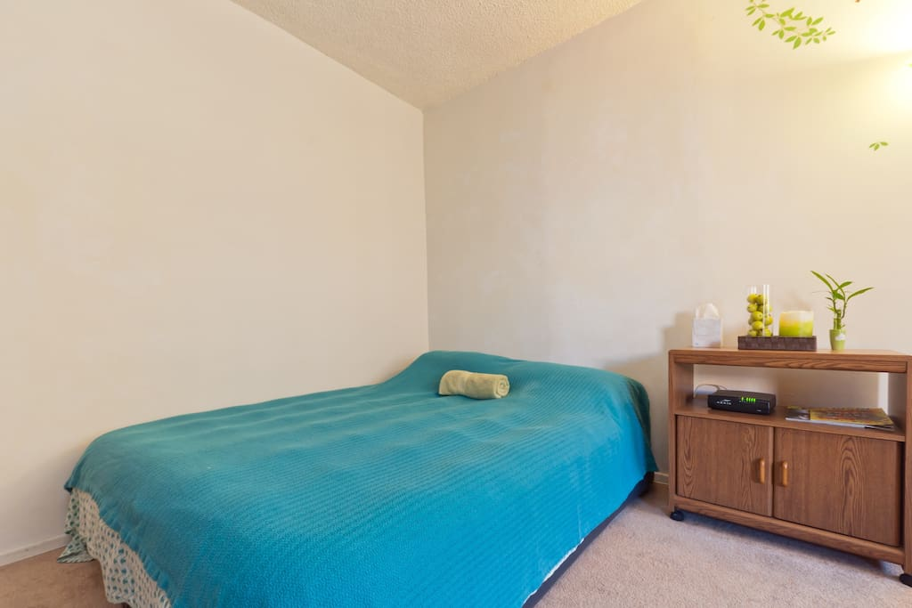Studio apartment has a separate kitchenette - room for two beds and perfect for students