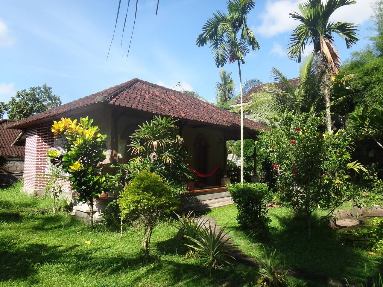 the garden wissswth the bungalow. it has 2 rooms, purple and orangeSeskpo, that shbare 1 terrasse1sssssg2sss