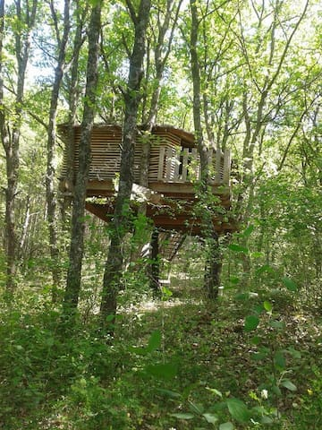 La cabane de Manon