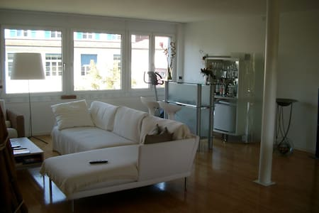 2Story Apartment City+Recreation ar - Olten - Apartemen