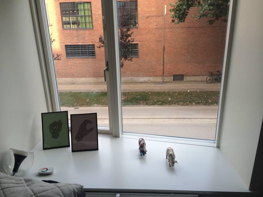 Udsigt fra værelset / View from the room