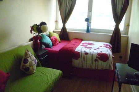 LONDON MEDE'S ROOM SLEEPS 2-4. - Chigwell - Apartemen