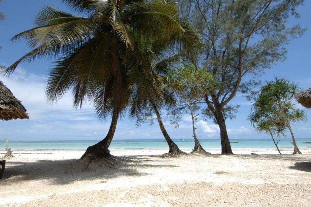 fronte mare spiaggia privata