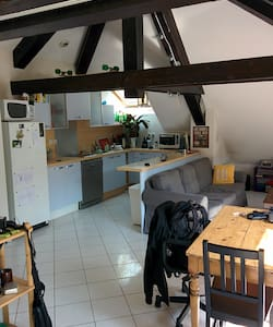 Mini Loft 50m2 sous les toits  - Grenoble