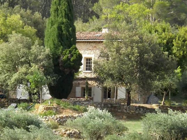 Authentic stone cottage, priv.pool - Le Thoronet