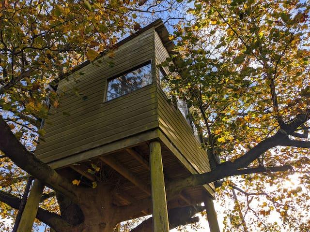 Coven Treehouse, Cronkshaw Fold Farm