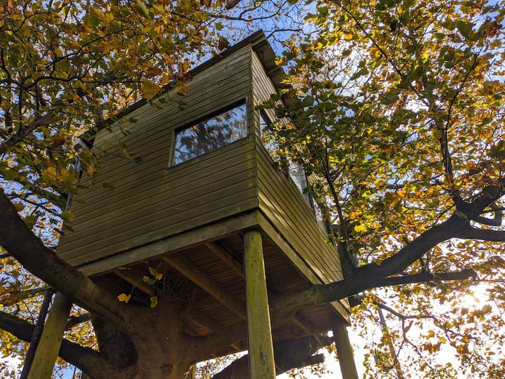 Coven Treehouse, Cronkshaw Fold Farm