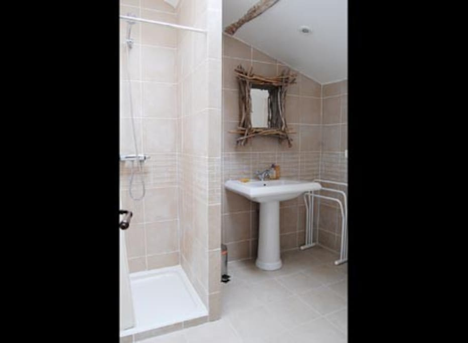 Shower room with washbasin and wc