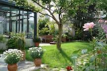 Jardin vu depuis la chambre