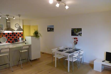 Appartement meublé proche Toulouse - Cornebarrieu - Apartament