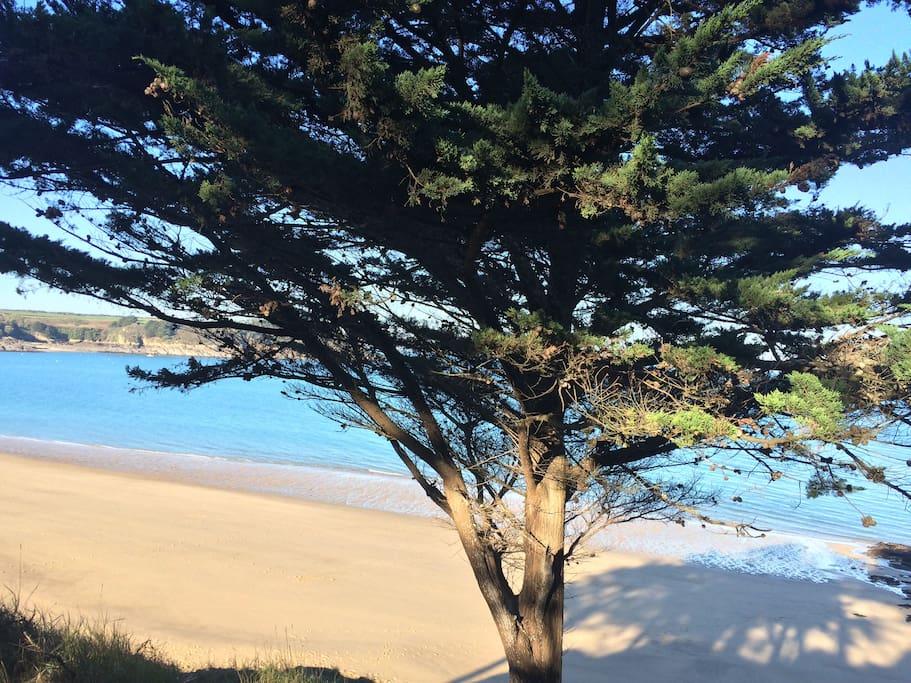 Maison de p cheur proximit des plages houses for rent - Maison de pecheur bretagne ...