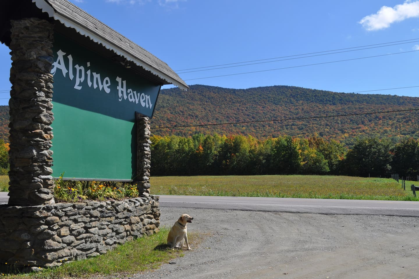 The Alpine Haven sign with the fall foliage at its full glory in the background.