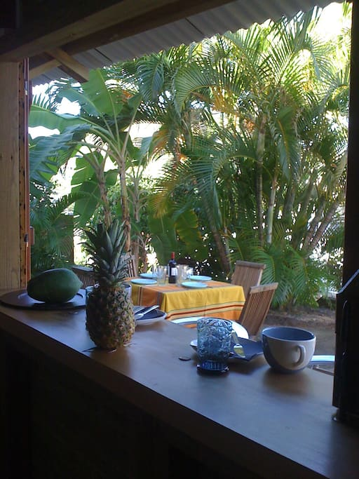 Terrasse vue de la cuisine