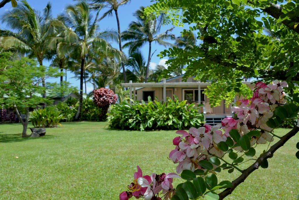 Cottage V - Surrounded by beautiful and lush landscaping and just steps from the beach