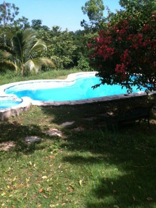 Heart-shaped pool!