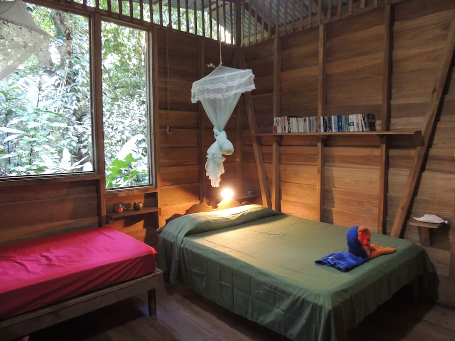 Sleep to the sound of the jungle - no glass, just wooden shutters for the shy adventurers!