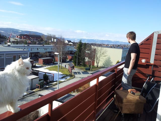 Cozy room in large flat with cat - Trondheim - Byt
