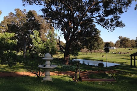 Anapana Ridge - Lesmurdie - Bed & Breakfast