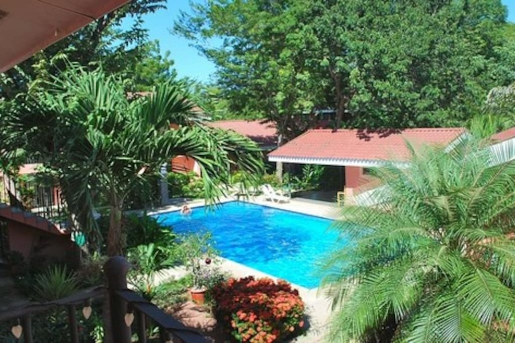Pool area - property grounds